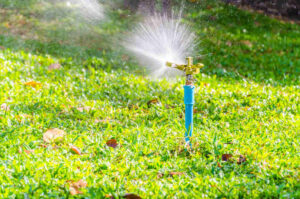 Sprinkler head watering in the lawn
