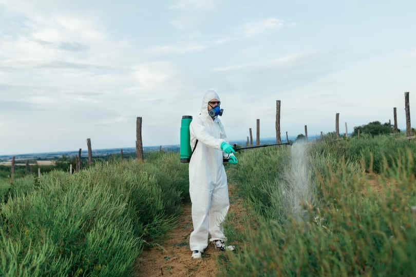 Worker in protective work-wear in weed control and spraying