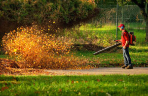 Man operating a heavy duty leaf blower; the leaves are being swirled up and glow in the pleasant sunlight